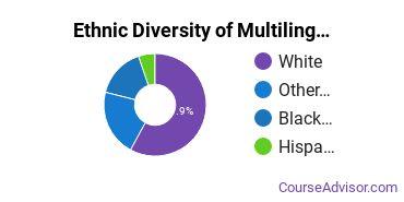 Multilingual Education Majors in MI Ethnic Diversity Statistics