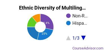 Multilingual Education Majors in PA Ethnic Diversity Statistics