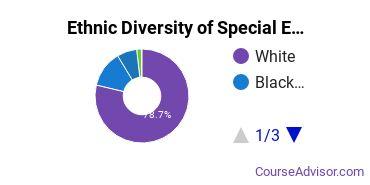 Special Education Majors in AL Ethnic Diversity Statistics
