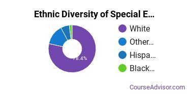 Special Education Majors in AK Ethnic Diversity Statistics