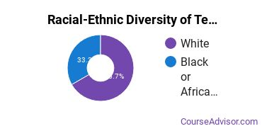 Racial-Ethnic Diversity of Teaching  Assistants Bachelor's Degree Students