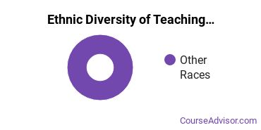 Teaching Assistant/Aide Majors in ME Ethnic Diversity Statistics