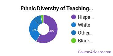 Teaching Assistant/Aide Majors in NM Ethnic Diversity Statistics