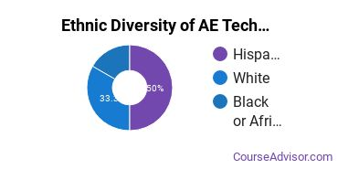 Architectural Engineering Majors in IL Ethnic Diversity Statistics