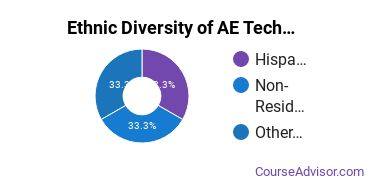 Architectural Engineering Majors in NJ Ethnic Diversity Statistics