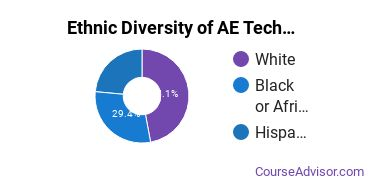 Architectural Engineering Majors in TN Ethnic Diversity Statistics