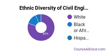 Civil Engineering Majors in IA Ethnic Diversity Statistics
