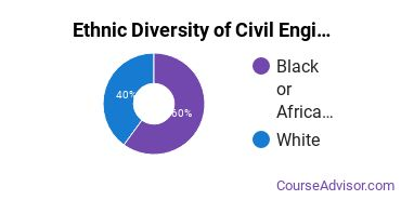 Civil Engineering Majors in LA Ethnic Diversity Statistics