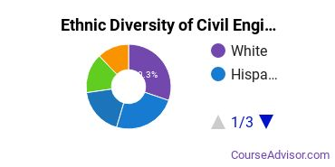 Civil Engineering Majors in NJ Ethnic Diversity Statistics