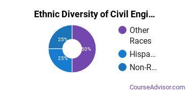Civil Engineering Majors in OK Ethnic Diversity Statistics