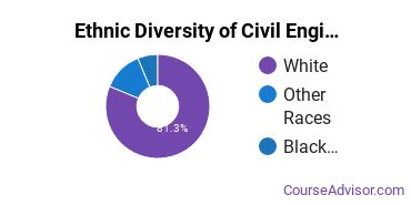 Civil Engineering Majors in OR Ethnic Diversity Statistics