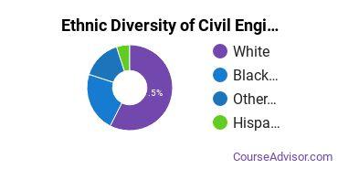 Civil Engineering Majors in SC Ethnic Diversity Statistics