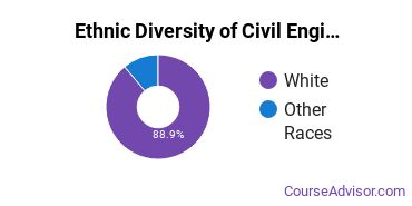 Civil Engineering Majors in VT Ethnic Diversity Statistics