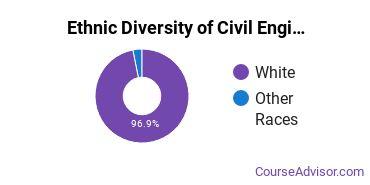 Civil Engineering Majors in WV Ethnic Diversity Statistics