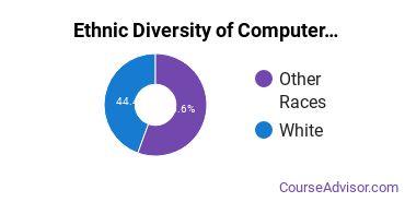 Computer Engineering Majors in HI Ethnic Diversity Statistics