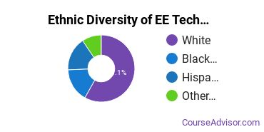 Electronics Engineering Majors in CT Ethnic Diversity Statistics