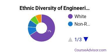 Engineering-Related Fields Majors in AR Ethnic Diversity Statistics