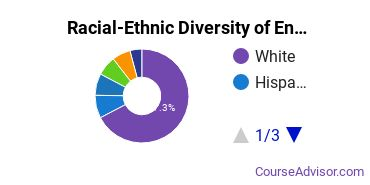 Racial-Ethnic Diversity of Engineering-Related Fields Students with Bachelor's Degrees