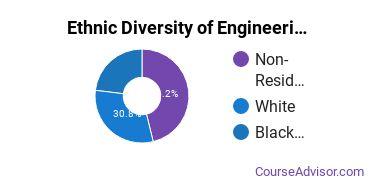 Engineering-Related Fields Majors in CT Ethnic Diversity Statistics