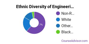 Engineering-Related Fields Majors in MN Ethnic Diversity Statistics