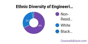 Engineering-Related Fields Majors in OR Ethnic Diversity Statistics