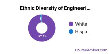 Engineering-Related Fields Majors in WI Ethnic Diversity Statistics