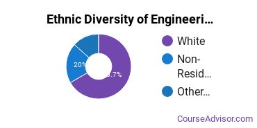 General Engineering Technology Majors in OR Ethnic Diversity Statistics