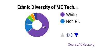 Mechanical Engineering Majors Ethnic Diversity Statistics