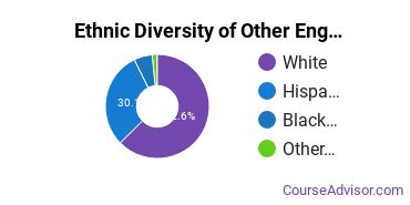 Other Engineering Technology Majors in CA Ethnic Diversity Statistics