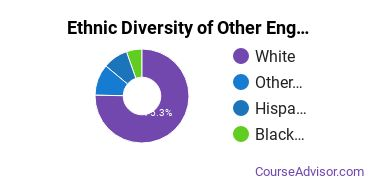 Other Engineering Technology Majors in MI Ethnic Diversity Statistics