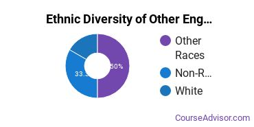 Other Engineering Technology Majors in MN Ethnic Diversity Statistics