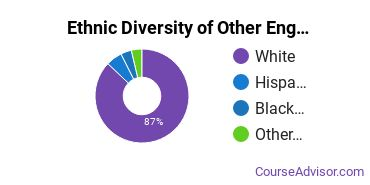 Other Engineering Technology Majors in PA Ethnic Diversity Statistics
