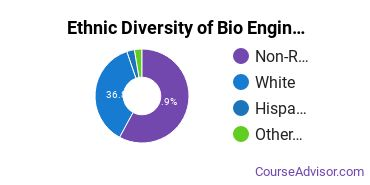 Biomedical Engineering Majors in MT Ethnic Diversity Statistics