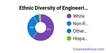 General Engineering Majors in MT Ethnic Diversity Statistics