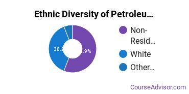 Petroleum Engineering Majors in MT Ethnic Diversity Statistics
