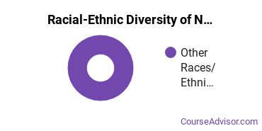 Racial-Ethnic Diversity of Native American Languages Bachelor's Degree Students