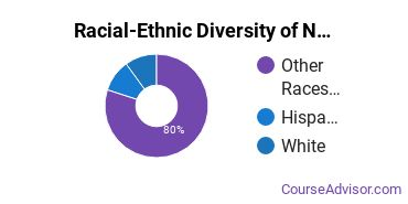 Racial-Ethnic Diversity of Native American Languages Basic Certificate Students
