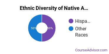 Native American Languages Majors in MN Ethnic Diversity Statistics