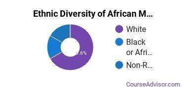 African Languages Majors Ethnic Diversity Statistics