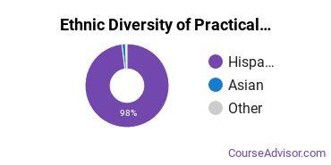 Nursing & Nursing Assistants Majors Ethnic Diversity Statistics