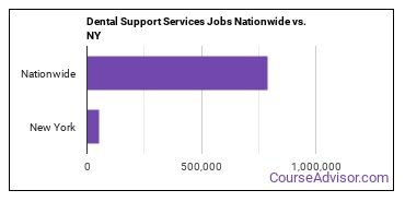 Dental Support Services Jobs Nationwide vs. NY