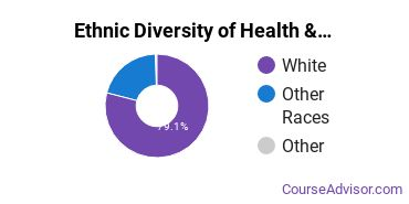 Health/Medical Admin Services Majors in ME Ethnic Diversity Statistics