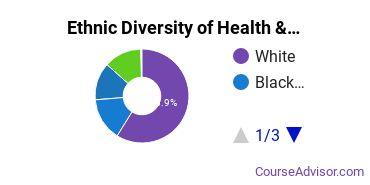 Health/Medical Admin Services Majors in RI Ethnic Diversity Statistics