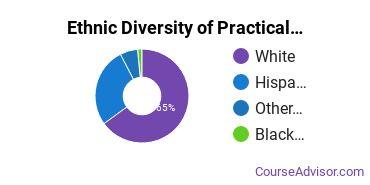 Nursing & Nursing Assistants Majors in ID Ethnic Diversity Statistics