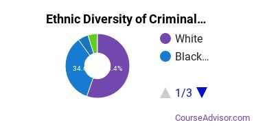 Criminal Justice & Corrections Majors in SC Ethnic Diversity Statistics