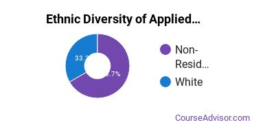 Applied Mathematics Majors in MS Ethnic Diversity Statistics