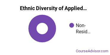 Applied Mathematics Majors in VT Ethnic Diversity Statistics