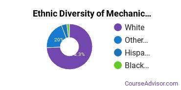 Mechanics & Repairers Majors in IN Ethnic Diversity Statistics