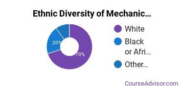 Mechanics & Repairers Majors in VA Ethnic Diversity Statistics