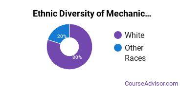 Mechanics & Repairers Majors in WV Ethnic Diversity Statistics
